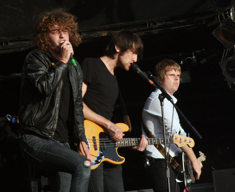 Pigeon_detectives2